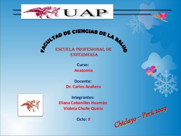 ESCUELA PROFESIONAL DE      ENFERMERÍA         Curso:        Anatomia         Docente:    Dr. Carlos Azañero        Integr...