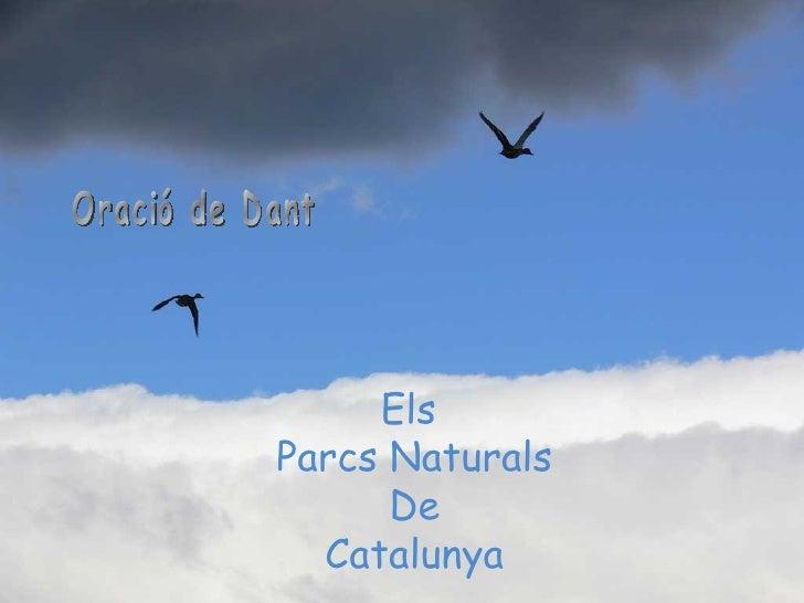 Els  Parcs Naturals De Catalunya Oració de Dant