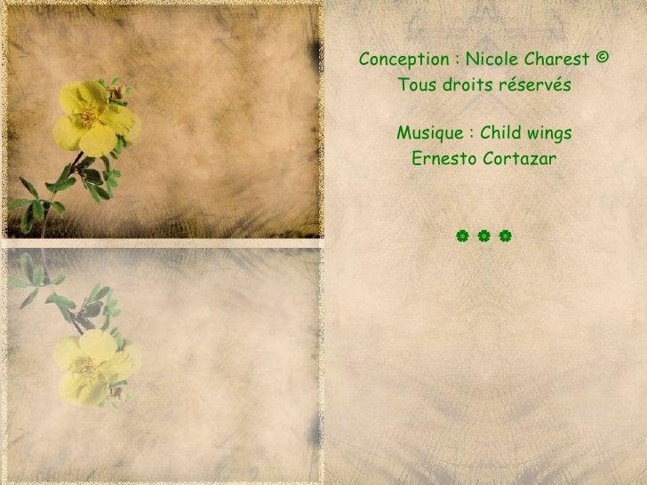 Conception : Nicole Charest ©    Tous droits réservés    Musique : Child wings     Ernesto Cortazar           