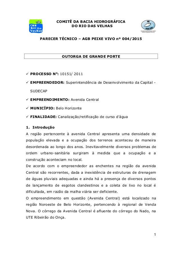 1 COMITÊ DA BACIA HIDROGRÁFICA DO RIO DAS VELHAS PARECER TÉCNICO – AGB PEIXE VIVO nº 004/2015 OUTORGA DE GRANDE PORTE  PR...