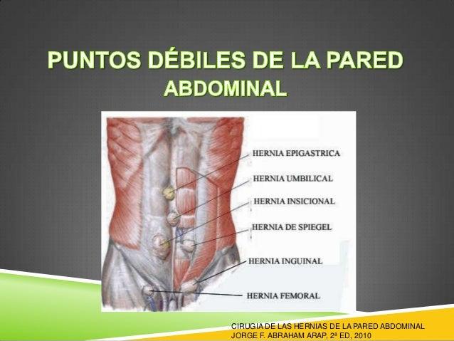 Anatomia y hernias de pared abdominal