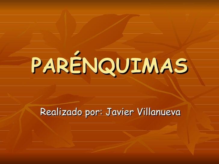 PARÉNQUIMAS Realizado por: Javier Villanueva