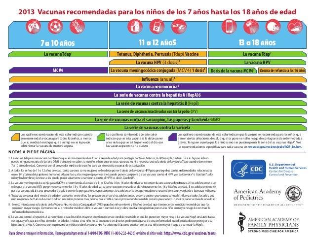 2013 Vacunas recomendadas para los niños de los 7 años hasta los 18 años de edad   7 a 10 AÑOS  11 a 12 AÑOS  13 a 18 AÑOS...