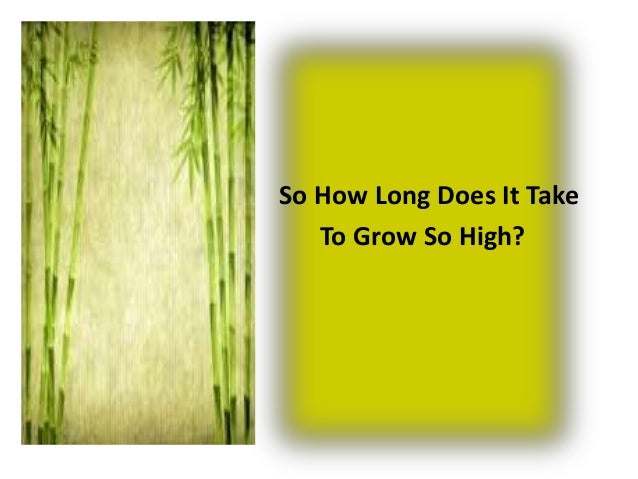 SO how long does it take to                              So How Long Does It Take                                 To Grow ...