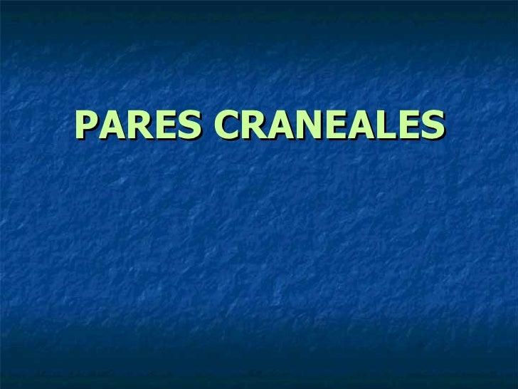 PARES CRANEALES