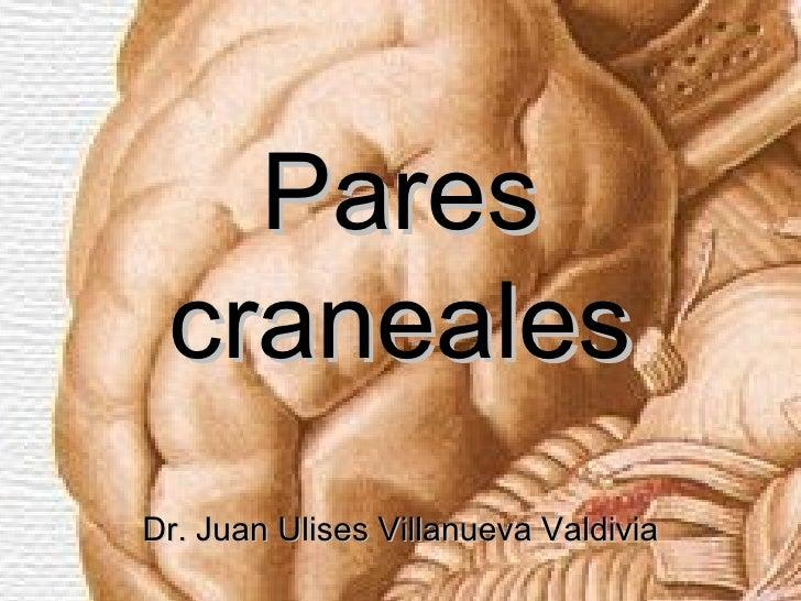 Pares cranealesDr. Juan Ulises Villanueva Valdivia