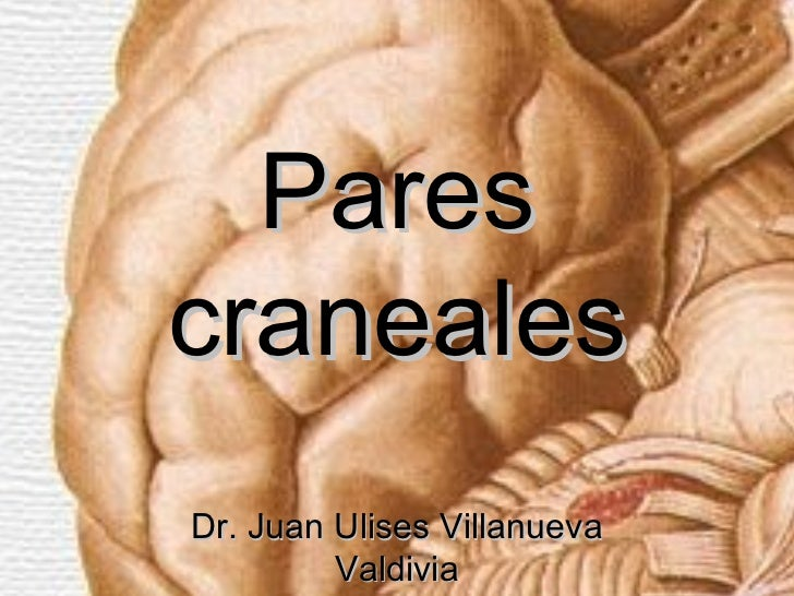 ParescranealesDr. Juan Ulises Villanueva         Valdivia