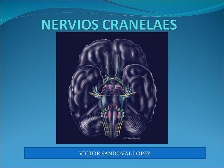 VICTOR SANDOVAL LOPEZ
