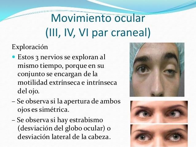 4to PAR (PATETICO O TROCLEAR)  El nervio troclear está compuesto solamente de fibras motoras que se originan en un grupo ...