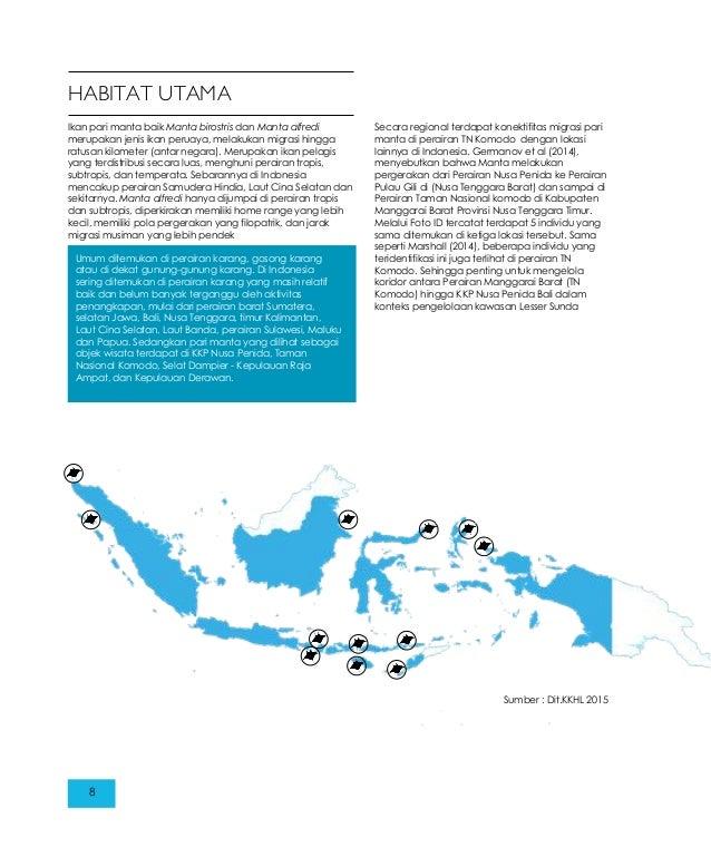 Pari Manta Di Kkp Nusa Penida Dan Tn Komodo