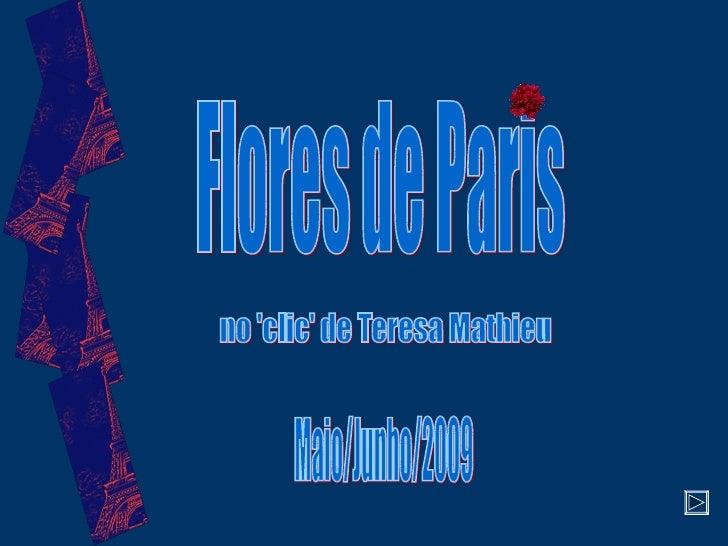 Flores de Paris no 'clic' de Teresa Mathieu Maio/Junho/2009