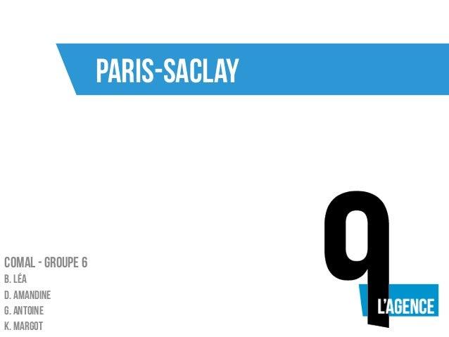 Paris-Saclay Comal - Groupe 6 B. Léa D. Amandine G. Antoine K. Margot