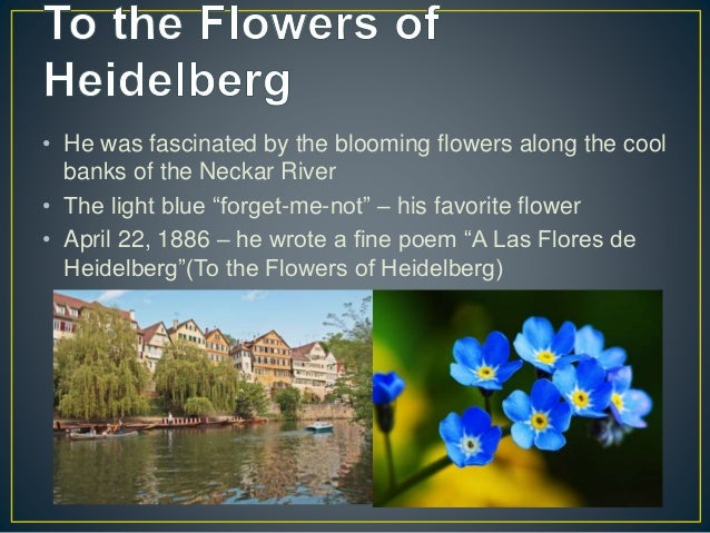 to the flowers of heidelberg by He also lived in heidelberg where he wrote a poem said to be inspired by   entitled, a las flores de heidelberg (to the flowers of heidelberg.