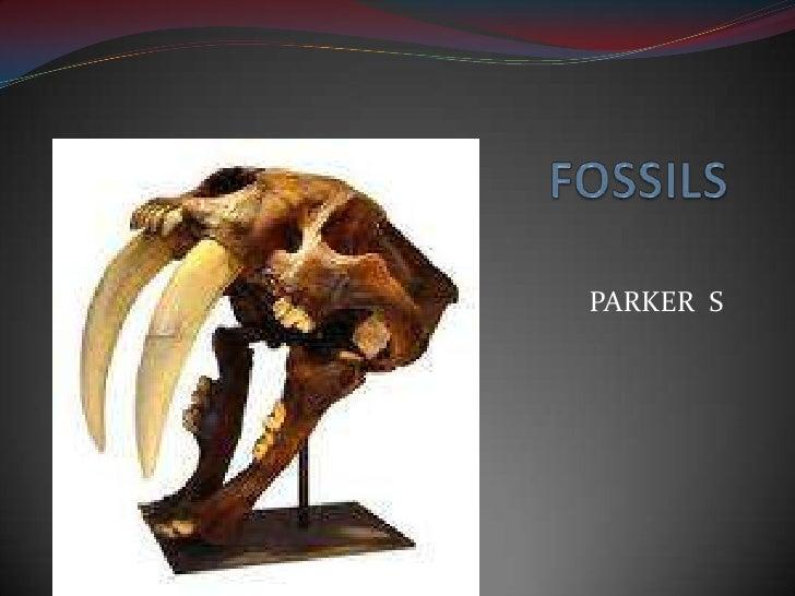 FOSSILS<br />PARKER  S<br />