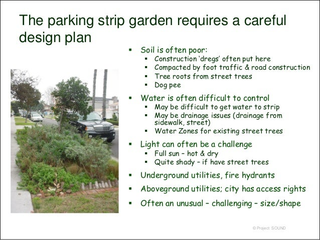 ... 6. The Parking Strip Garden ...