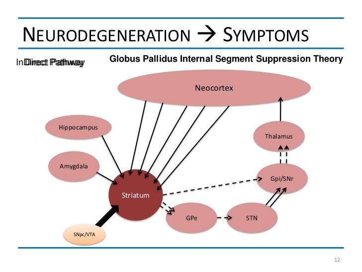 NEURODEGENERATION  SYMPTOMSInDirect Pathway  Direct Pathway        Globus Pallidus Internal Segment Suppression Theory   ...