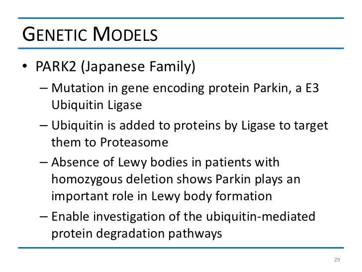 GENETIC MODELS• PARK2 (Japanese Family)  – Mutation in gene encoding protein Parkin, a E3    Ubiquitin Ligase  – Ubiquitin...