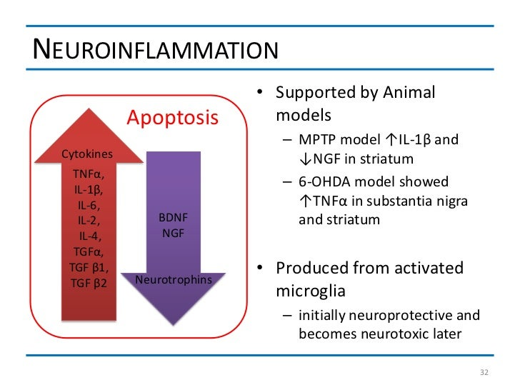 NEUROINFLAMMATION                              • Supported by Animal              Apoptosis         models                ...