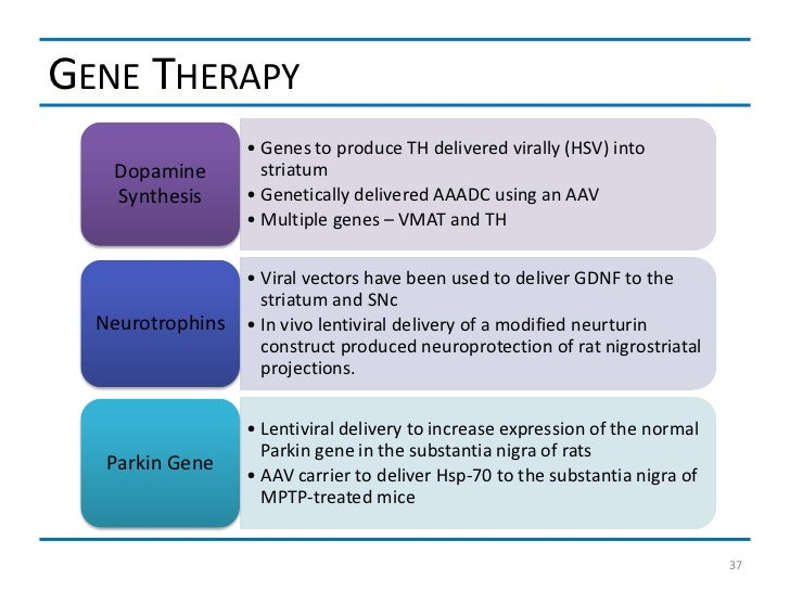 GENE THERAPY                  • Genes to produce TH delivered virally (HSV) into   Dopamine         striatum   Synthesis  ...