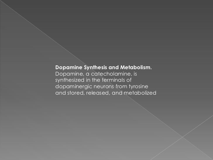 Dopamine Synthesis and Metabolism.Dopamine, a catecholamine, issynthesized in the terminals ofdopaminergic neurons from ty...