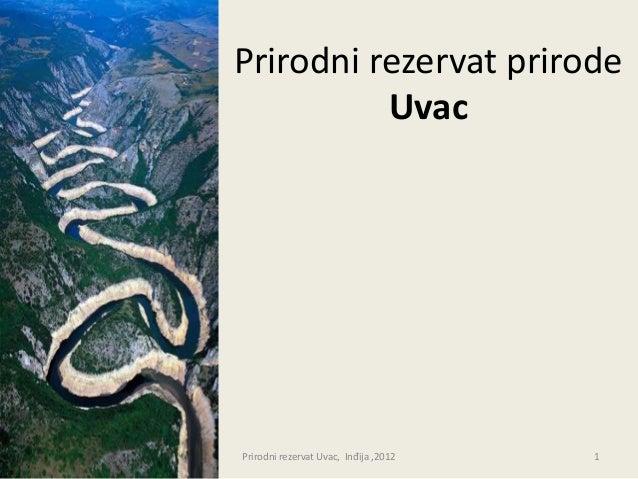Prirodni rezervat prirode          UvacPrirodni rezervat Uvac, Inđija ,2012   1