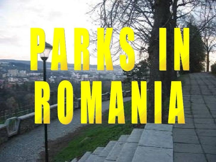 Cetăţuie Park, Cluj-Napoca