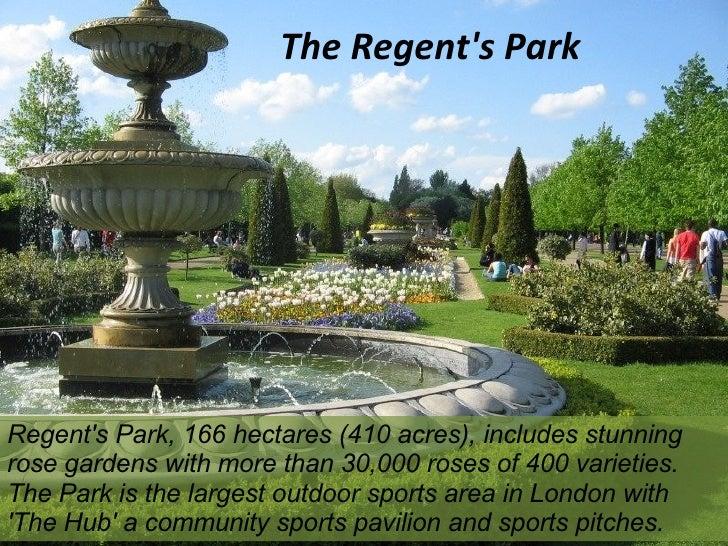 Roses In Garden: Parks Of London