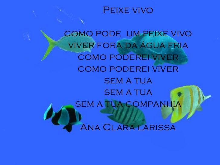 Peixe vivocomo pode um peixe vivo viver fora da água fria   como poderei viver   como poderei viver        sem a tua      ...