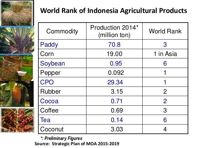 Opportunities And Constraints For Indonesian Commodities