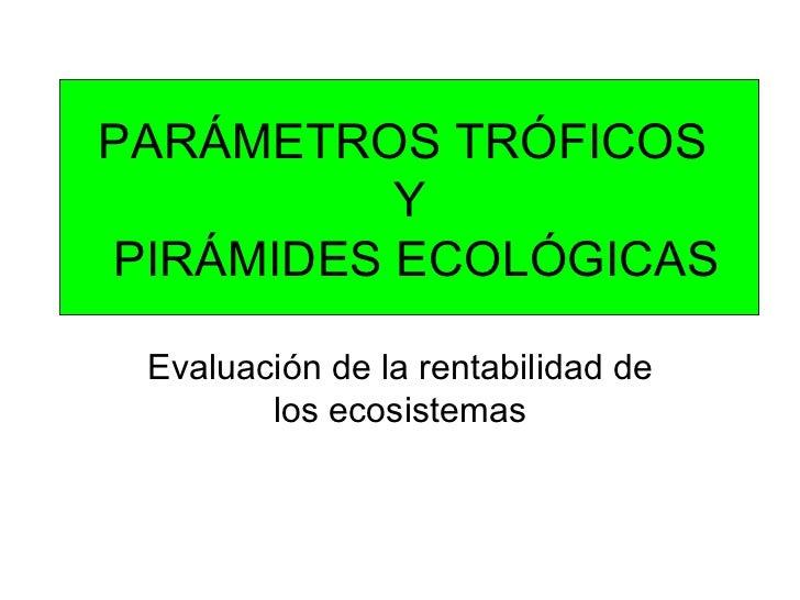 PARÁMETROS TRÓFICOS  Y  PIRÁMIDES ECOLÓGICAS Evaluación de la rentabilidad de los ecosistemas