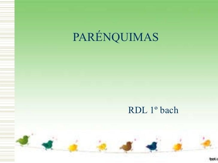 PARÉNQUIMAS RDL 1º bach