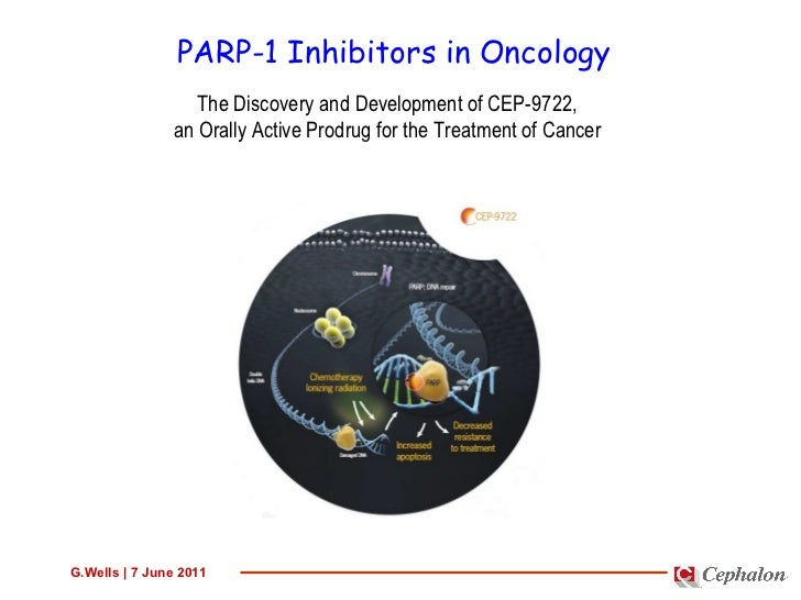 PARP-1 Inhibitors in Oncology The Discovery and Development of CEP-9722, an Orally Active Prodrug for the Treatment of Can...