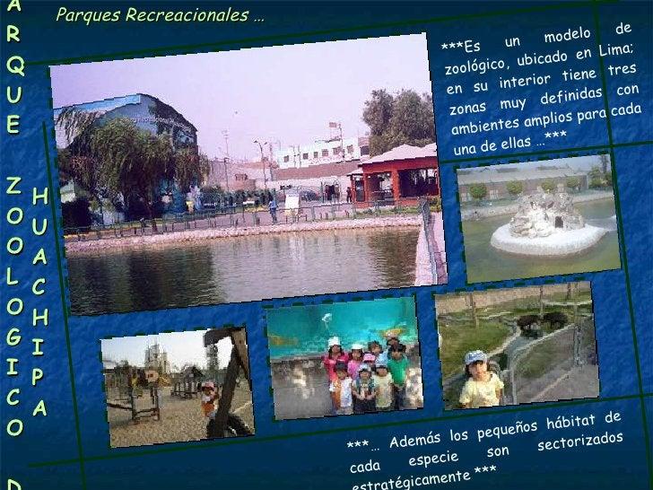 Parques Recreacionales … P A R Q U E Z OO L O G I C O  D E HUACHIPA ***Es un modelo de zoológico, ubicado en Lima; en su i...