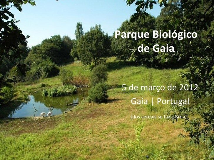 Parque Biológico    de Gaia 5 de março de 2012   Gaia | Portugal   [dos cereais se faz a Broa]