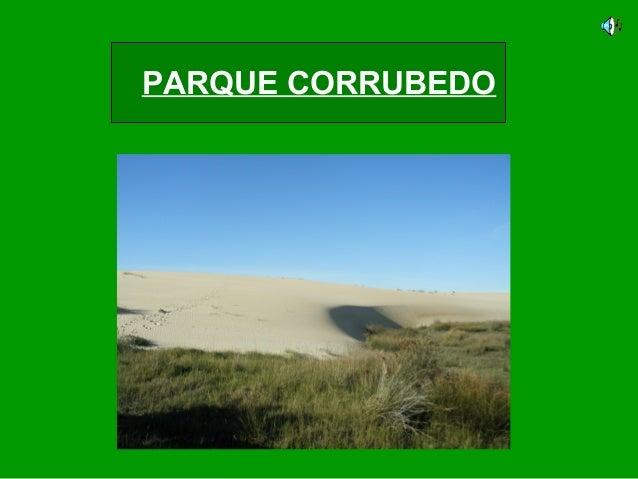 PARQUE CORRUBEDO