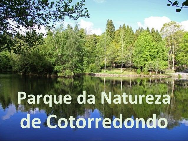 Parque da Natureza de Cotorredondo