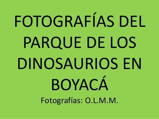 FOTOGRAFÍAS DEL PARQUE DE LOS DINOSAURIOS EN BOYACÁ Fotografías: O.L.M.M.