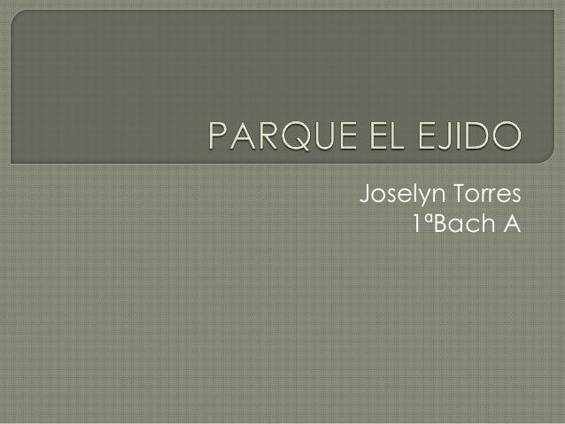 Joselyn Torres 1ªBach A