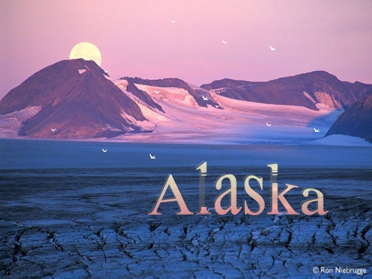 El Parque Nacional de Kenai es el        menor de los 8 parques    nacionales de Alaska, pero en      compensación es uno ...