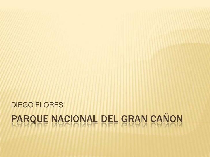 DIEGO FLORESPARQUE NACIONAL DEL GRAN CAÑON