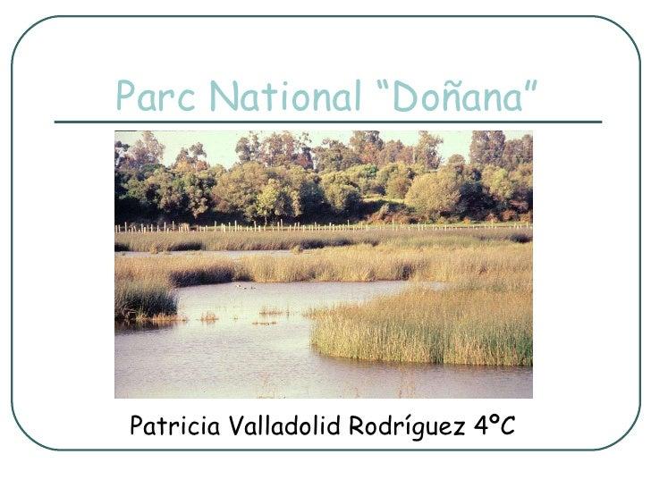 "Parc National ""Doñana"" Patricia Valladolid Rodríguez 4ºC"