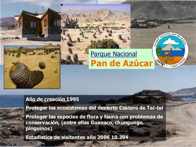 Parque Nacional Pan de Azúcar Año de creación 1995 Proteger los ecosistemas del desierto Costero de Tal-tal Proteger las e...