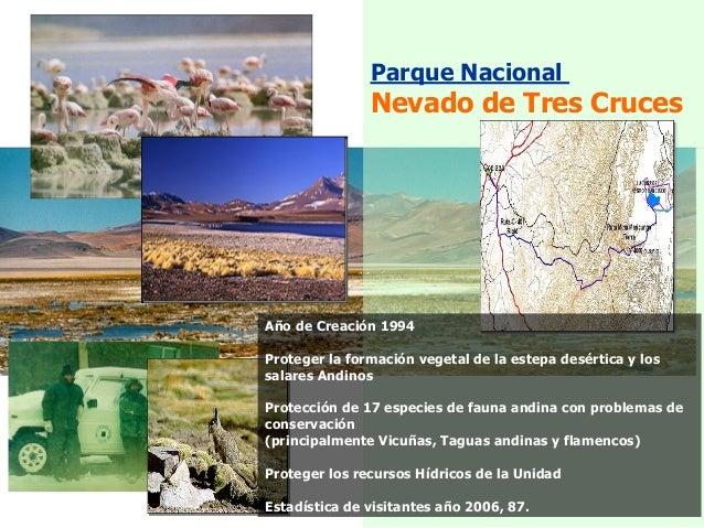 Parque Nacional Nevado de Tres Cruces Año de Creación 1994 Proteger la formación vegetal de la estepa desértica y los sala...