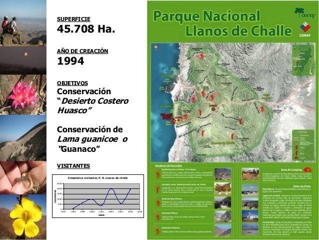 """SUPERFICIE 45.708 Ha. AÑO DE CREACIÓN 1994 OBJETIVOS Conservación """"Desierto Costero Huasco"""" Conservación de Lama guanicoe ..."""