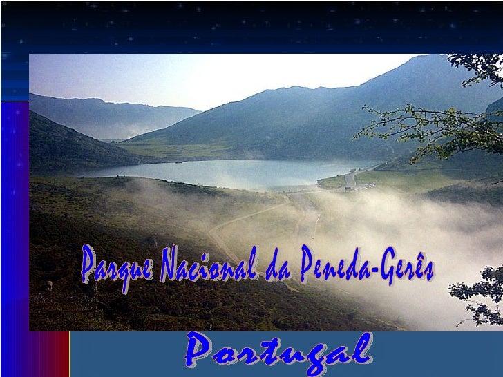 Parque Nacionalda Peneda-Gerês   Único parque nacional de Portugal                    Situa-se no extremo nordeste        ...