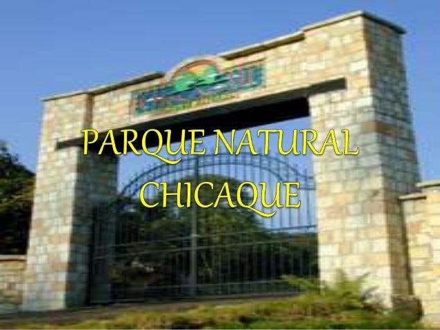 INTRODUCCION  Chicaque está ubicado en el Municipio de San Antonio del Tequendama, a tan sólo 30 minutos de Bogotá.  A c...