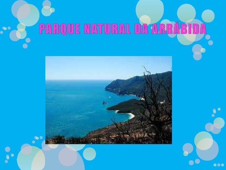 PARQUE NATURAL DA ARRÁBIDA<br />