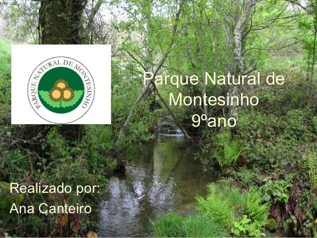 Parque Natural de Montesinho 9ºano Realizado por: Ana Canteiro