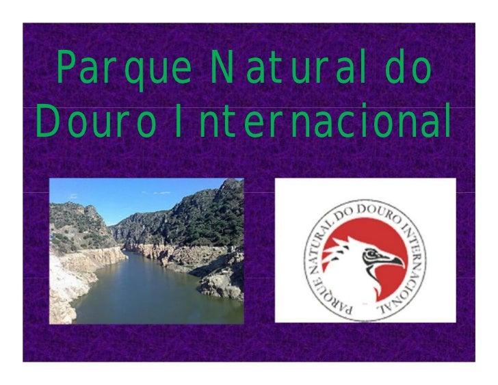Parque Natural doDouro Internacional