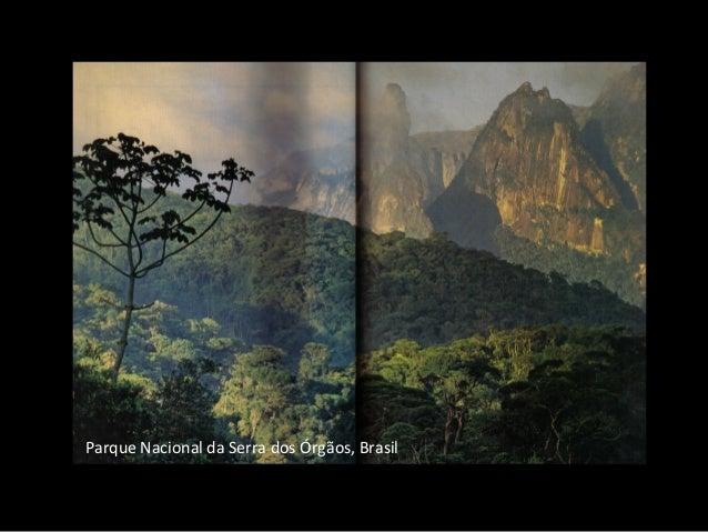Parque Nacional da Serra dos Órgãos, Brasil